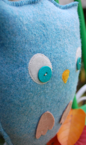 Blue owl 1 013