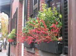 Boston_2006_021_1