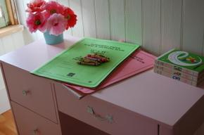 Pink_desk_2_009