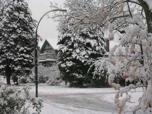 Snow_006_1