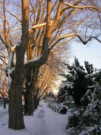 Sun_and_snow_003