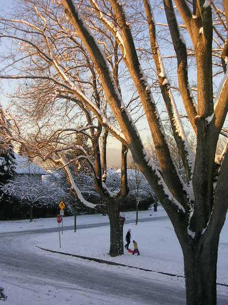 Sun_and_snow_004_2